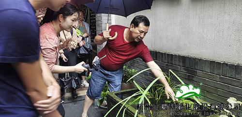 """""""乐""""在其中,""""园""""来是你——记杭园股份常务副总裁李寿仁的小庭院营造分享会"""