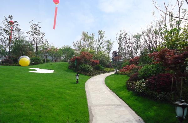 杭州临安春天花园景观工程和深圳水库排洪河水