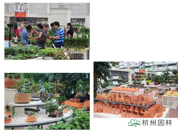 园中心温室展厅景观及产品-杭城首家花园中心